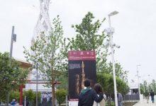 perchè la macchina di Santa Rosa all'EXPO?