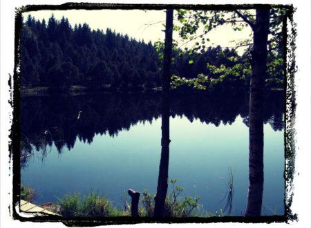 Foresta Nera: Schonach e Triberg.