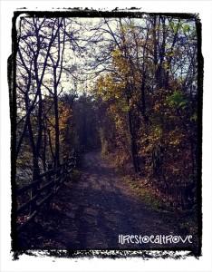il rpimo tratto di sentiero