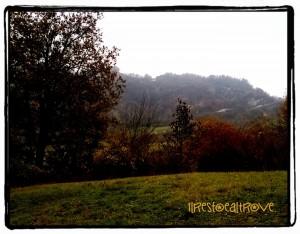 panorami sui calanchi