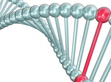 Come si sviluppa un tumore? Qualche facile cenno sulla genetica del cancro
